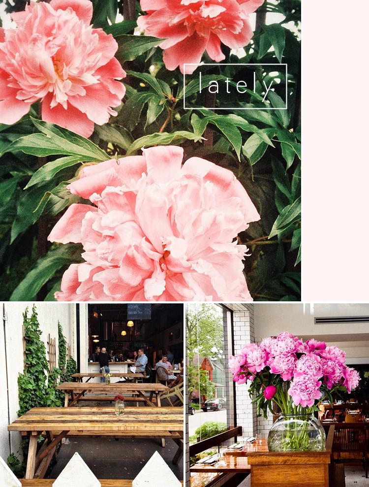 instagram_flowers